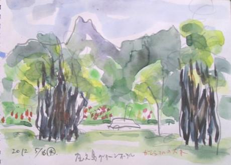 Yakusima_005
